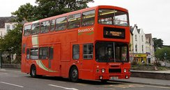 Shamrock Buses