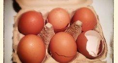 JK's Eggs