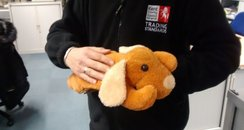 Dog Hot Water Bottle Seized By Trading Standards