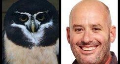Jack The Lad Owl