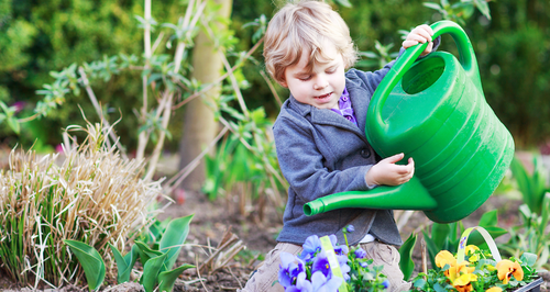 Little Boy Gardening
