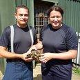 Tortoise Rescue