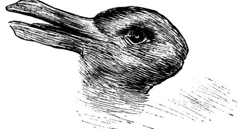 rabbit duck illusion