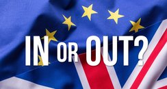 EU Referendum In out