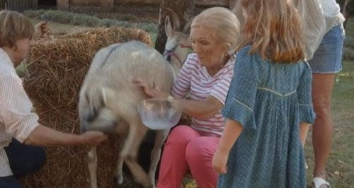 Mary Berry Is Attacked By A GOAT On Her Cooking Sh