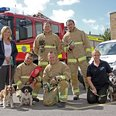 Oxygen masks for animals in West Sussex